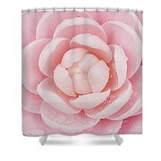 Pink Up Close and Personal Shower Curtain by Rich Franco