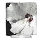 Pointillized Althea Flower Shower Curtain by Renee Trenholm