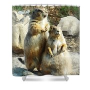 Prairie Dog Formal Portrait Shower Curtain by Susan Savad