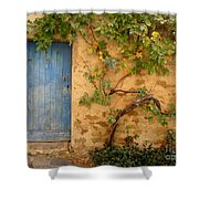 Provence Door 5 Shower Curtain by Lainie Wrightson