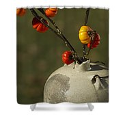 Pumpkin On A Stick In An Old Primitive Moonshine Jug Shower Curtain by Kathy Clark
