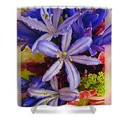 Purple Stars Shower Curtain by Debbie Portwood