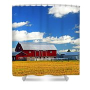 Red Barn Shower Curtain by Elena Elisseeva