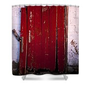 Red Door Shower Curtain by Cale Best