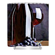 Red In The Shadows Shower Curtain by Elaine Plesser