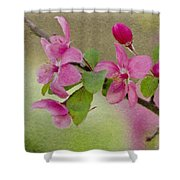 Redbud Branch Shower Curtain by Jeff Kolker