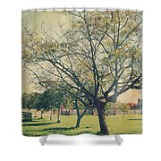 Redemption Shower Curtain by Laurie Search