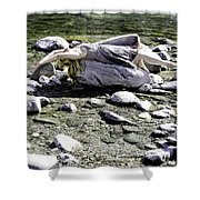 Relax Shower Curtain by Joana Kruse