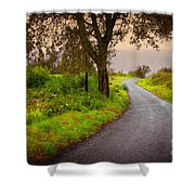 Road On Woods Shower Curtain by Carlos Caetano