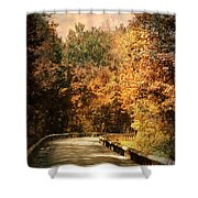 Road To Paradise Shower Curtain by Jai Johnson