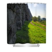 Roman Aqueducts Shower Curtain by Joan Carroll