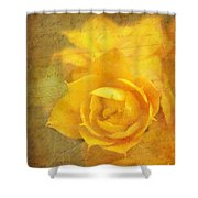 Roses For Remembrance Shower Curtain by Judi Bagwell