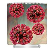 Rubella Virus Particles Shower Curtain by Russell Kightley