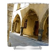 Rue Des Templiers Shower Curtain by Lainie Wrightson