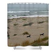 Run My Dogs Shower Curtain by Henrik Lehnerer