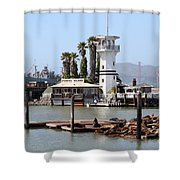 Sea Lions At Pier 39 San Francisco California . 7d14294 Shower Curtain by Wingsdomain Art and Photography