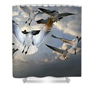 Seagulls In Flight Shower Curtain by Natural Selection Ralph Curtin