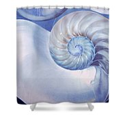 Seashell. Blue Version  Shower Curtain by Jenny Rainbow
