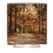 Secluded Entrance Shower Curtain by Jai Johnson