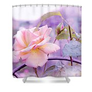 She Like The Ghost Beside Me. Scottish Rose Shower Curtain by Jenny Rainbow