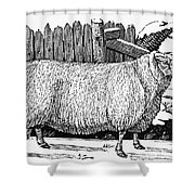Sheep, 1788 Shower Curtain by Granger