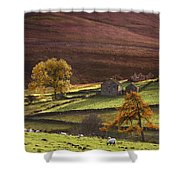 Sheep On A Hill, North Yorkshire Shower Curtain by John Short