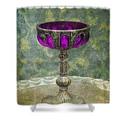 Silver Chalice With Jewels Shower Curtain by Jill Battaglia