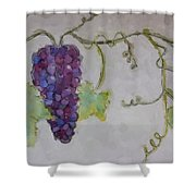 Simply Grape Shower Curtain by Heidi Smith