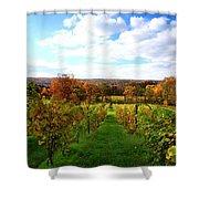 Six Miles Creek Vineyard Shower Curtain by Paul Ge