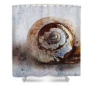Snail Shell Shower Curtain by Ron Jones