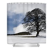 Snowy Field And Tree Shower Curtain by John Short