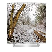 Snowy Watercolor Shower Curtain by Debra and Dave Vanderlaan