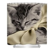 Soft Shower Curtain by Amy Tyler