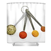 Spices In Measuring Spoons Shower Curtain by Elena Elisseeva