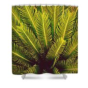 Spiked Leaves Shower Curtain by Sumit Mehndiratta