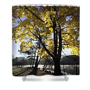 Spirit By The Lake Shower Curtain by Rob Travis