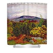 Spring Shower Curtain by Daniel Alexander Williamson