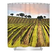 Spring Vineyard Shower Curtain by Sharon Foster