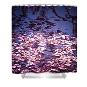 Spring's Embers - Cherry Blossom Petals On The Surface Of A Pond Shower Curtain by Vivienne Gucwa