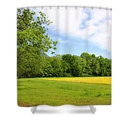 Springtime In Franklin Shower Curtain by Kristin Elmquist
