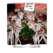 Squid For Sale Shower Curtain by Heather Applegate