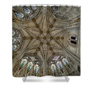 St Mary's Ceiling Shower Curtain by Adrian Evans