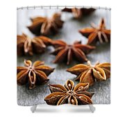 Star Anise Fruit And Seeds Shower Curtain by Elena Elisseeva