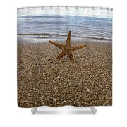 Starfish Shower Curtain by Stylianos Kleanthous