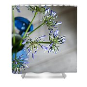 Still Life 05 Shower Curtain by Nailia Schwarz
