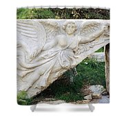 Stone Carving Of Nike Shower Curtain by Mark Greenberg