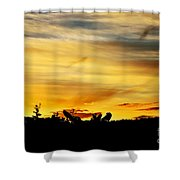 Stripey Sunset Silhouette Shower Curtain by Kaye Menner