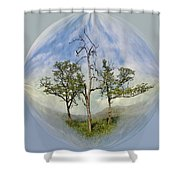 Summer Dreams Shower Curtain by Debra and Dave Vanderlaan
