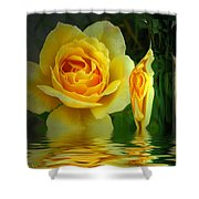 Sunny Delight And Vase 2 Shower Curtain by Joyce Dickens