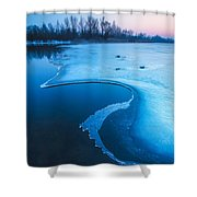 Swan Shower Curtain by Davorin Mance